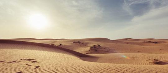 Pourquoi partir en voyage à Oman avec ses enfants